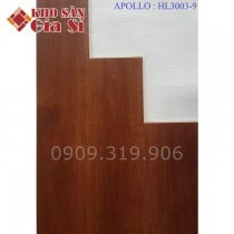 San-nhua-hem-khoa-apollo-hl-3003-9